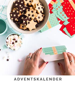 Besondere_Adventskalender_online_kaufen_zum_befullen